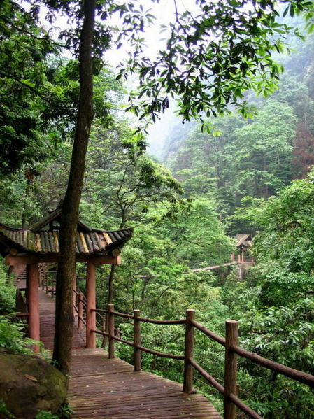 Image 12. Wooden bridgewalk over the Crystal Stream, on the western slopes of Emei Shan [Mount Emei, Sichuan Province, China]. Photo by Ishai Bar (Headrock), selfmade, User Headrock on en.wikipedia. (title edited by author.
