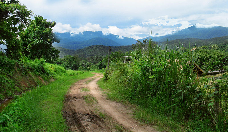 Image 8. Doi Suthep National Park, Chiang Mai Province, northern Thailand. Photo by Hdamm.