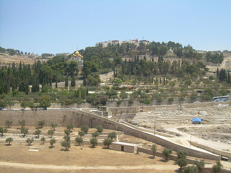 Image 14. Mount of Olives [Jerusalem, Israel] as it was on 10 August 2011. Photo by Nemo.
