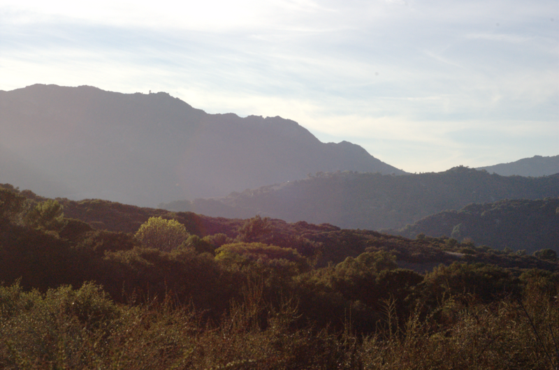 Image 2. View of Topanga State Park and Topanga Canyon — from one of the hiking trails in the Santa Monica Mountains National Recreation Area [Los Angeles, California, USA]. Photo by Rneches.