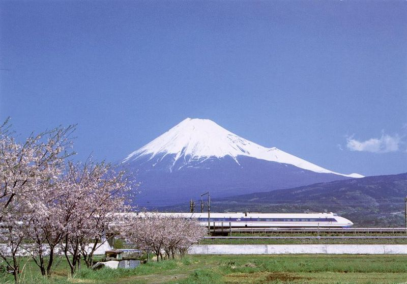 Image 9. Mount Fuji [with a Shinkansen (a high speed railway) and cherry blossoms in the foreground, Japan]. Photo by Swolib.
