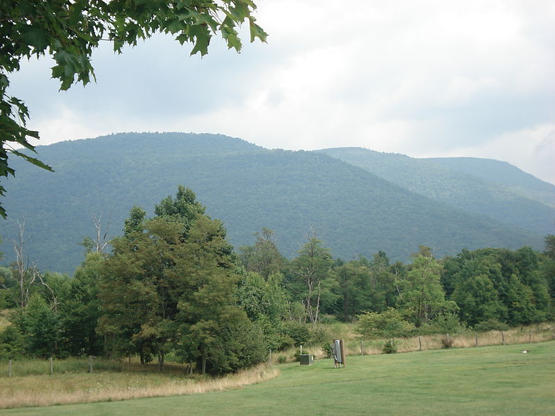 Image 15. Back Allegheny Mountain, West Virginia [USA] (Photo taken from Whittaker Station on Cass Scenic Railroad). Photo by Valerius Tygart.