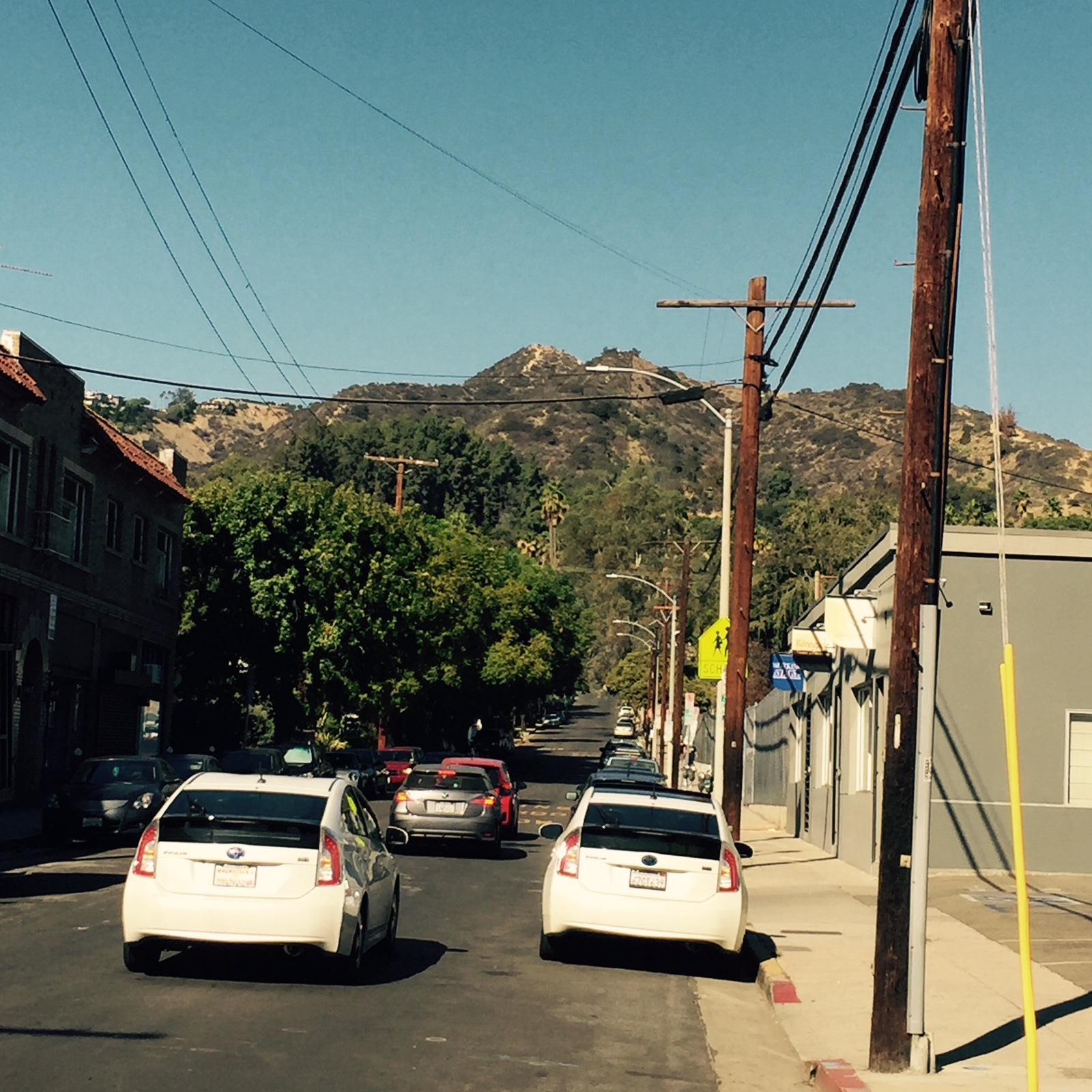 Image 18. Santa Monica Mountains, view from the corner of Sunset and Gardner, Hollywood, California, USA. Photo by Jonathan P. Hersh. Permission granted. (title by author).