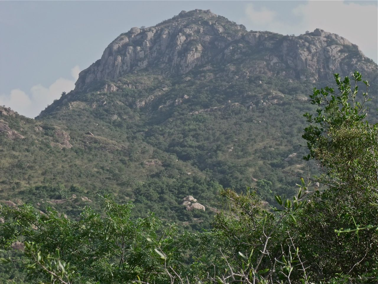 Image 9. Mount Arunachala, Tiruvannamalai, South India. (title by author) With kind permission of the Arunachala-live camera (http:/arunachala-live.com), February 17, 201?).