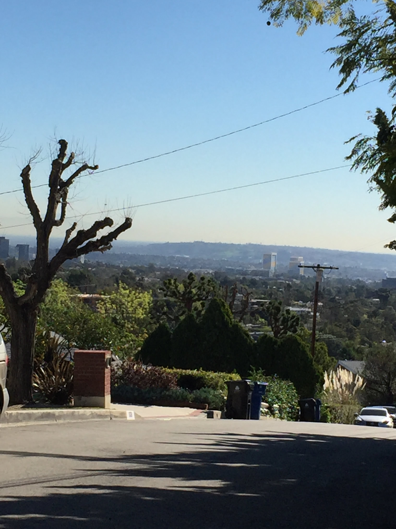 Image 17. View of Los Angeles from a housing development in the Santa Monica Mountains where homes begin at roughly $2,000,000 (in January, 2016), Brentwood, Los Angeles, USA. Photo by author, 26 January 2016.
